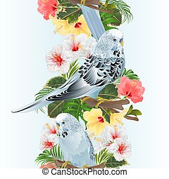 Seamless background tropical vertical border Budgerigars with hibiscus vector