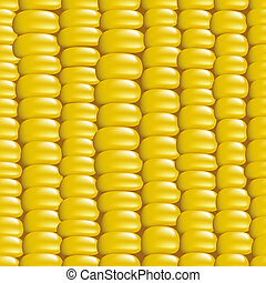 Seamless background with a grain of corn. Vector illustration.