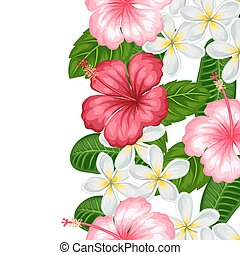 Seamless border with tropical flowers hibiscus and plumeria....