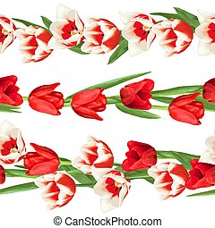 Seamless borders with red and white tulips. Beautiful realistic flowers, buds and leaves
