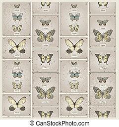 seamless butterfly patttern