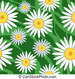 seamless camomile background