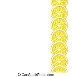 Seamless decorative border of lemon slice. Vector citrus design