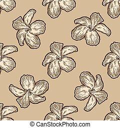 seamless., deska, bukiet, malwa, kwiaty, drapać, imitation.