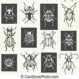 Seamless entomological vector pattern with  bugs.