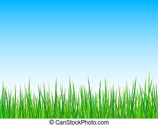 Seamless grass on a blue sky background