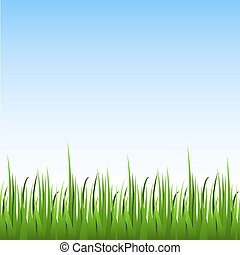 Seamless green grass with blue sky horizontal vector background.
