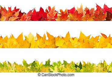 seamless, herfst ahorn loof
