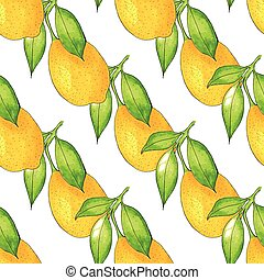 Seamless Lemon tree branch, watercolor painting on white background, vector illustration.