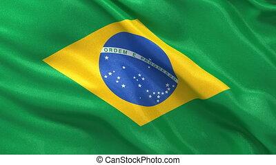 Seamless loop of Brazilian Flag