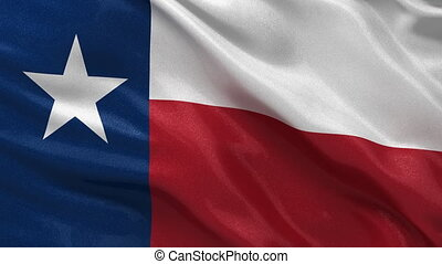 Seamless loop of the flag of Texas - Flag of Texas waving in...
