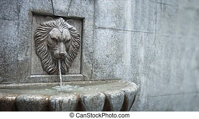 Seamless, Looping Cinemagraph of Decorative Sculpted Lion Head Fountain
