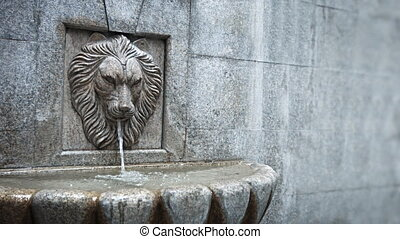 Seamless, Looping Cinemagraph of Decorative Sculpted Lion...