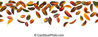 seamless, otoño sale