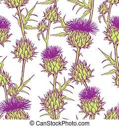 seamless, padrão, com, onopordum, acanthium., cardo escocês