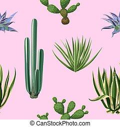seamless, patrón, con, cactus, y, succulents, set., plantas,...