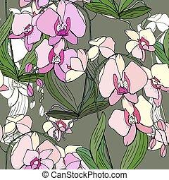 seamless, patrón, con, tradicional, homeplant, phalaenopsis., interminable, textura, con, flor, utilizado, indoor.