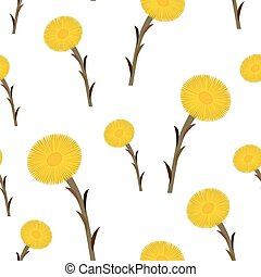 Seamless pattern coltsfoot flowers, vector
