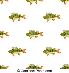 Seamless pattern freshwater flat colorful perch fish isolated on white background. Marine fresh food