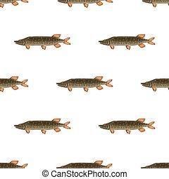 Seamless pattern freshwater flat pike fish isolated on white background. Marine fresh food logo, fishing sport