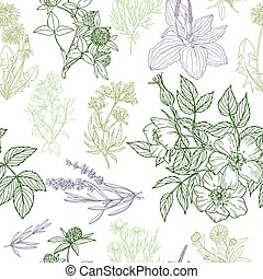 seamless pattern, medicinal herbs and flowers