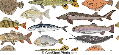 Seamless pattern of hand drawn river and sea fish. Turbot and pike and flounder and perch and crucian carp and sturgeon, carp and mackerel, Dorado, rainbow trout and catfish. Vector illustration