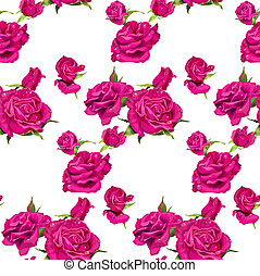 Seamless pattern of pink roses on a white background