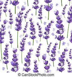 Seamless pattern of provence violet lavender flowers on a white background. Vector illustration.