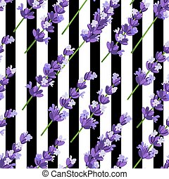 Seamless pattern of provence violet lavender flowers on black stripes. Vector illustration.