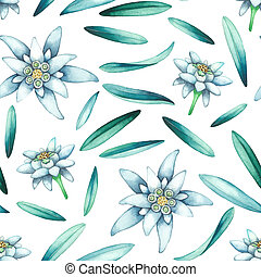 Seamless pattern of watercolor edelweiss flowers and leaves. Hand painted repeated botanical design