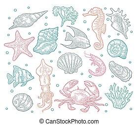 Seamless pattern sea animal. - Set sea animal. Shell,...