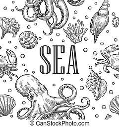Seamless pattern sea shell, coral, crab, octopus and shrimp. Vector engraving vintage illustrations. Isolated on white background