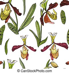 Seamless pattern with beautiful exotic orchid. Paphiopedilum in white