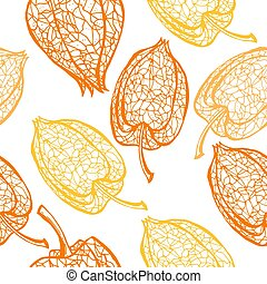 Seamless pattern with branches physalis. Skeleton winter cherry with berry vector seamless background.