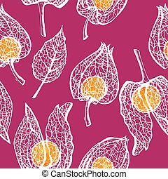 Seamless pattern with branches physalis. White skeleton winter cherry with berry vector seamless background.