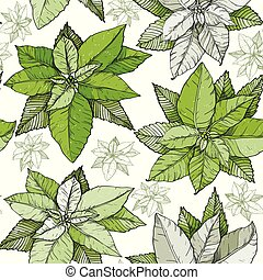 Seamless pattern with Christmas poinsettia green flowers