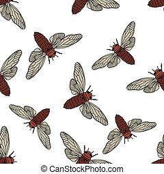 Seamless pattern with cicada . Cicadidae. Chremistica...