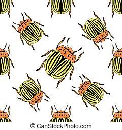 Seamless pattern with colorado potato beetle. Leptinotarsa decemlineata.  colorado beetle. Vector
