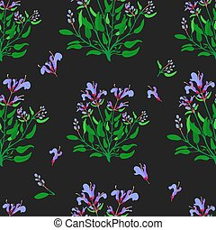 Seamless Pattern with Common Sage and its Parts - Seamless ...