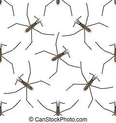 Seamless pattern with Common water strider. Gerridae. GERRIS...