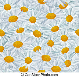 Seamless pattern with daises