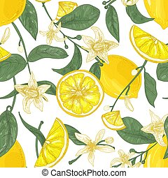Seamless pattern with fresh juicy lemons, whole and cut into pieces, flowers and leaves on white background. Backdrop with citrus fruits. Botanical vector illustration in antique style for wallpaper.