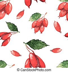seamless pattern with fruits of dogwood