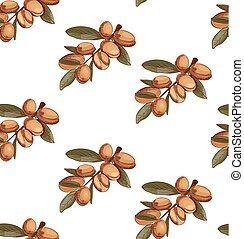 Seamless pattern with hand drawn argan, branch sketch. Colored. VECTOR art.