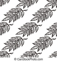 Seamless Pattern with Hand Drawn Ash Leaves