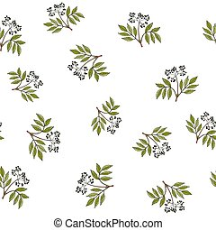 Seamless pattern with hand drawn elder branches
