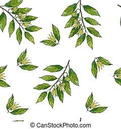 Seamless pattern with hand drawn ylang ylang