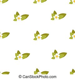 Seamless pattern with jasmine flowers. Vector background