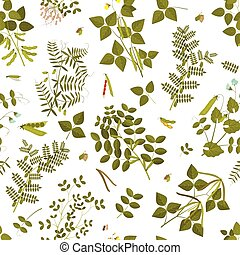 Seamless pattern with legumes plants and its leaves, pods and flowers. Vector illustration.