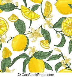Seamless pattern with lemons, whole and cut into pieces, flowers and leaves on white background. Backdrop with citrus fruits. Natural vector illustration in elegant vintage style for wrapping paper.